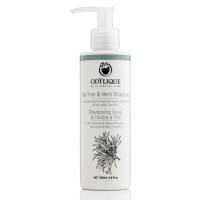 Tea Tree & Herb Shampoo 200 ml - Odylique